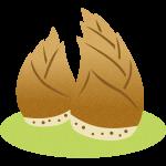 筍(たけのこ)のイラスト素材