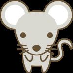 かわいい鼠(ねずみ)の動物イラスト