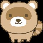 かわいい狸(たぬき)の動物イラスト