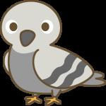 鳩(はと)のイラスト