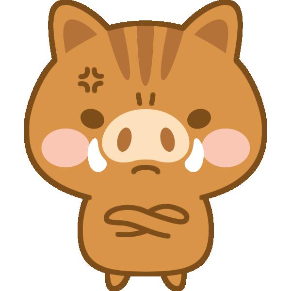 怒っている猪のイラスト