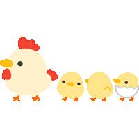 歩く鶏とひよこのイラスト