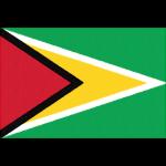 ガイアナの国旗イラストフリー素材