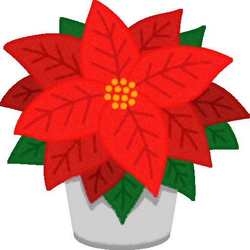 ポインセチア(クリスマスフラワー)のイラスト