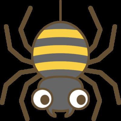 蜘蛛(クモ)のイラスト