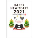 2021年賀状デザイン無料テンプレート「紋付袴を着たかわいいウシ」